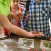Ekskursija uz Tērvetes Dabas parku
